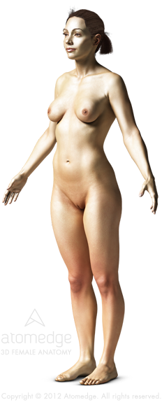 Atomedge 3D Female Body